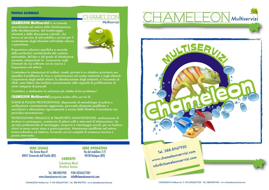 Brochuere Chameleon-page-001